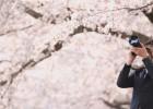 A-2「エンドロールを撮りに」写真