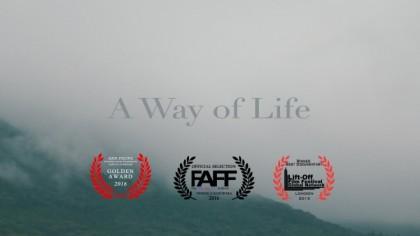 D-2「A Way of Life」